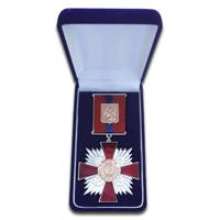 Знак отличия За заслуги перед городом Красноярском в футляре