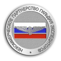 Серебряный значок НК Гильдия экспедиторов.