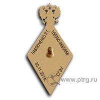 Нагрудный знак МАГИСТР , парадный , с символикой РАН, реверс